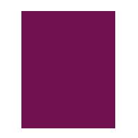 Coffret 1 bouteille & 2 verres -  Louis Roederer